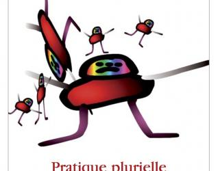 Préliminaire 17: Pratique plurielle, Désir singulier